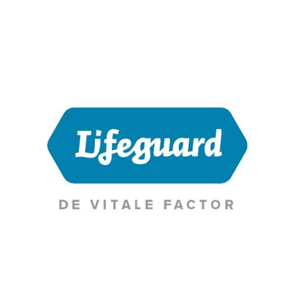 Lifeguard logo Flow Development
